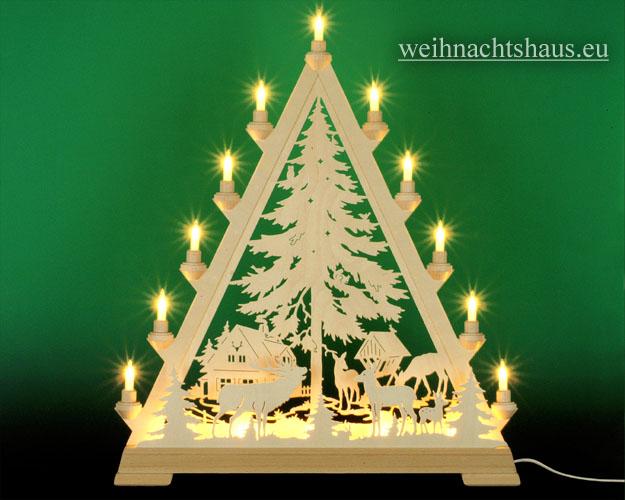 Seiffen Weihnachtshaus - Tannenspitze 16 Kerzen Forsthaus 57 cm - Bild 1