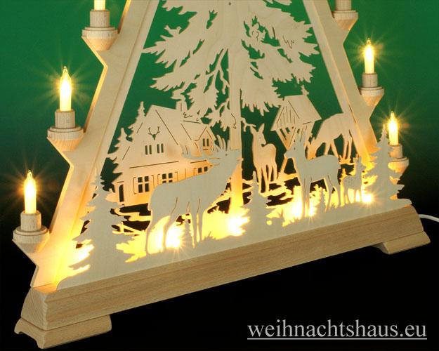 Seiffen Weihnachtshaus - Tannenspitze 16 Kerzen Forsthaus 57 cm - Bild 2