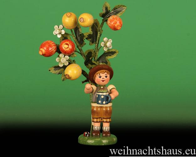 Seiffen Weihnachtshaus - 2015  Jahresfigur Hubrig Stachelbeere - Bild 1
