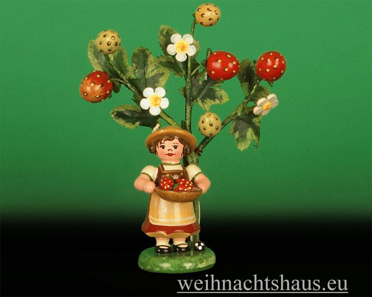 Seiffen Weihnachtshaus - 2014  Jahresfigur Hubrig Erdbeere - Bild 1