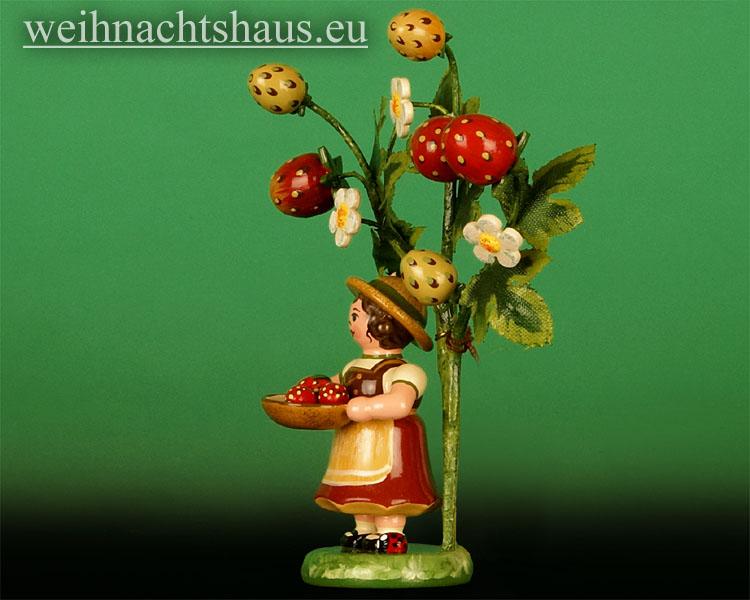 Seiffen Weihnachtshaus - 2014  Jahresfigur Hubrig Erdbeere - Bild 2