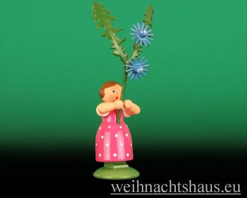 Seiffen Weihnachtshaus - Wiesenblumenkind 11cm Wegwarte - Bild 1
