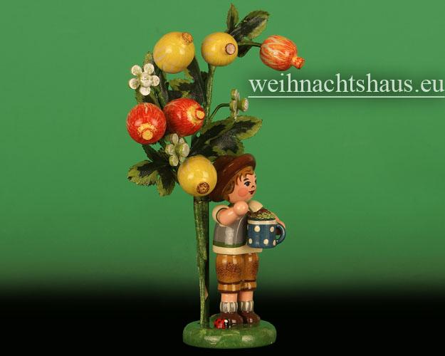 Seiffen Weihnachtshaus - 2015  Jahresfigur Hubrig Stachelbeere - Bild 2